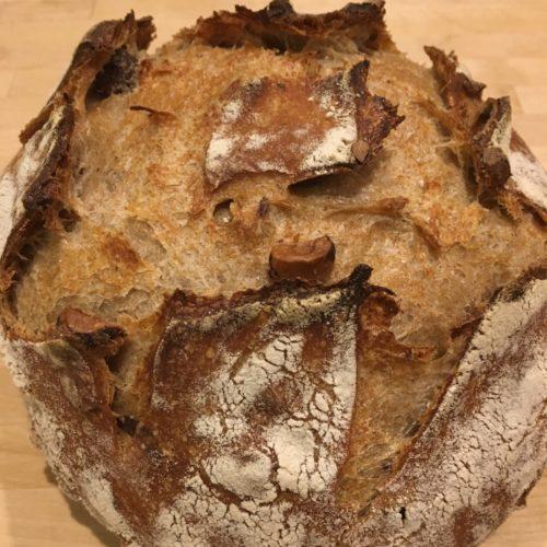 Toasted Hazelnut, September 25